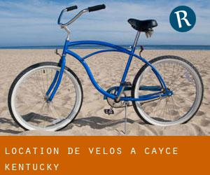 Location de Vélos à Cayce (Kentucky)