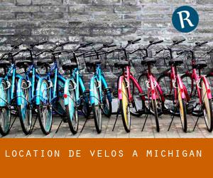 Location de Vélos à Michigan